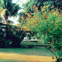 Espaço Verde: um SPA pertinho do Recife