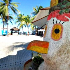 Festival Gastronômico movimenta praias do litoral sul
