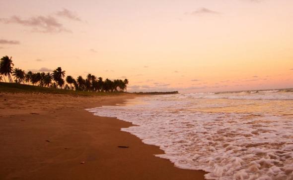 Costa do Sauípe Créditos: Divulgação do site oficial da praia