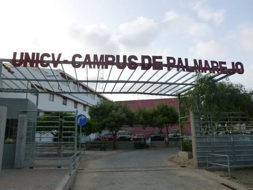 A Universidade