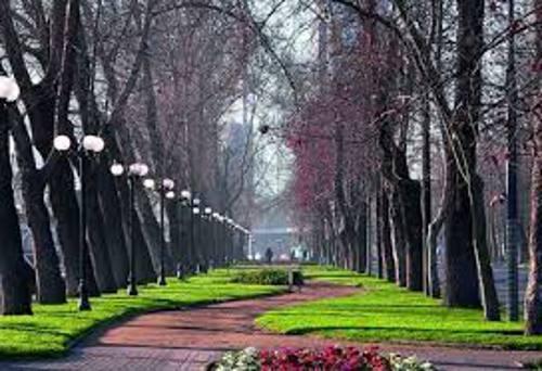 Muitos parques