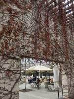 A bela entrada da vinícola