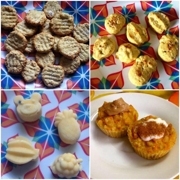 Alguns dos alimentos feitos pela veterinária: Biscoitos, sorvetes e bolinhos de cenoura e maçã Créditos: Instagram La Cãosine