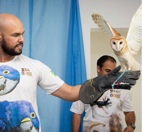 Uma das corujas da EcoKids. Crédito: Monica Paiva/Divulgação