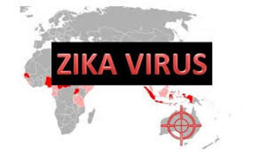 zicavirus