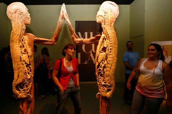 """Exposição """"O Fantástico Corpo Humano"""". Crédito: Reprodução Facebook"""