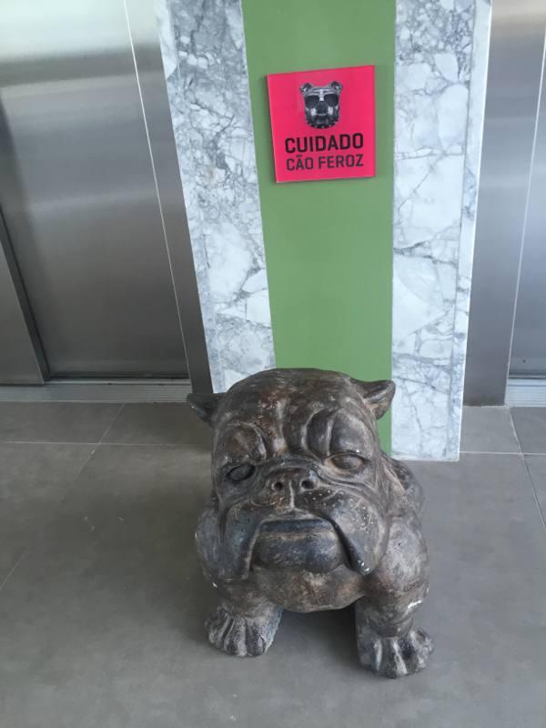 O cachorro é segurança