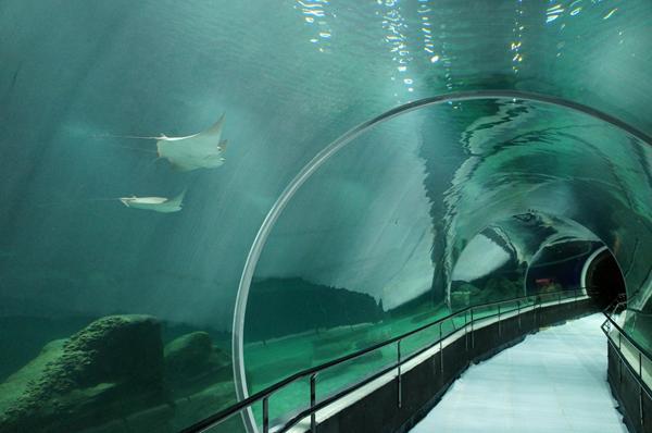 O Aquario, que ainda nem foi inaugurado oficialmente, será cenário do Elle Fashion Preview - Crédito: Agnnaldo Motta/Divulgação