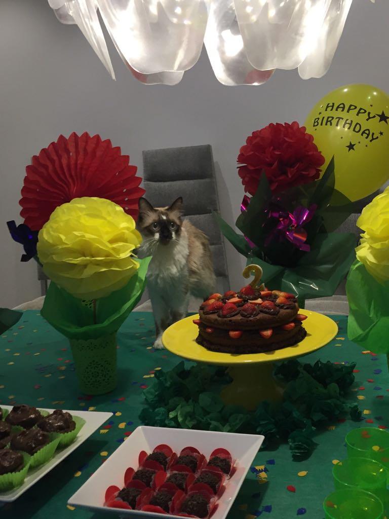 Carlota ganhou até um aniversário de dois anos - Crédito: Arquivo Pessoal