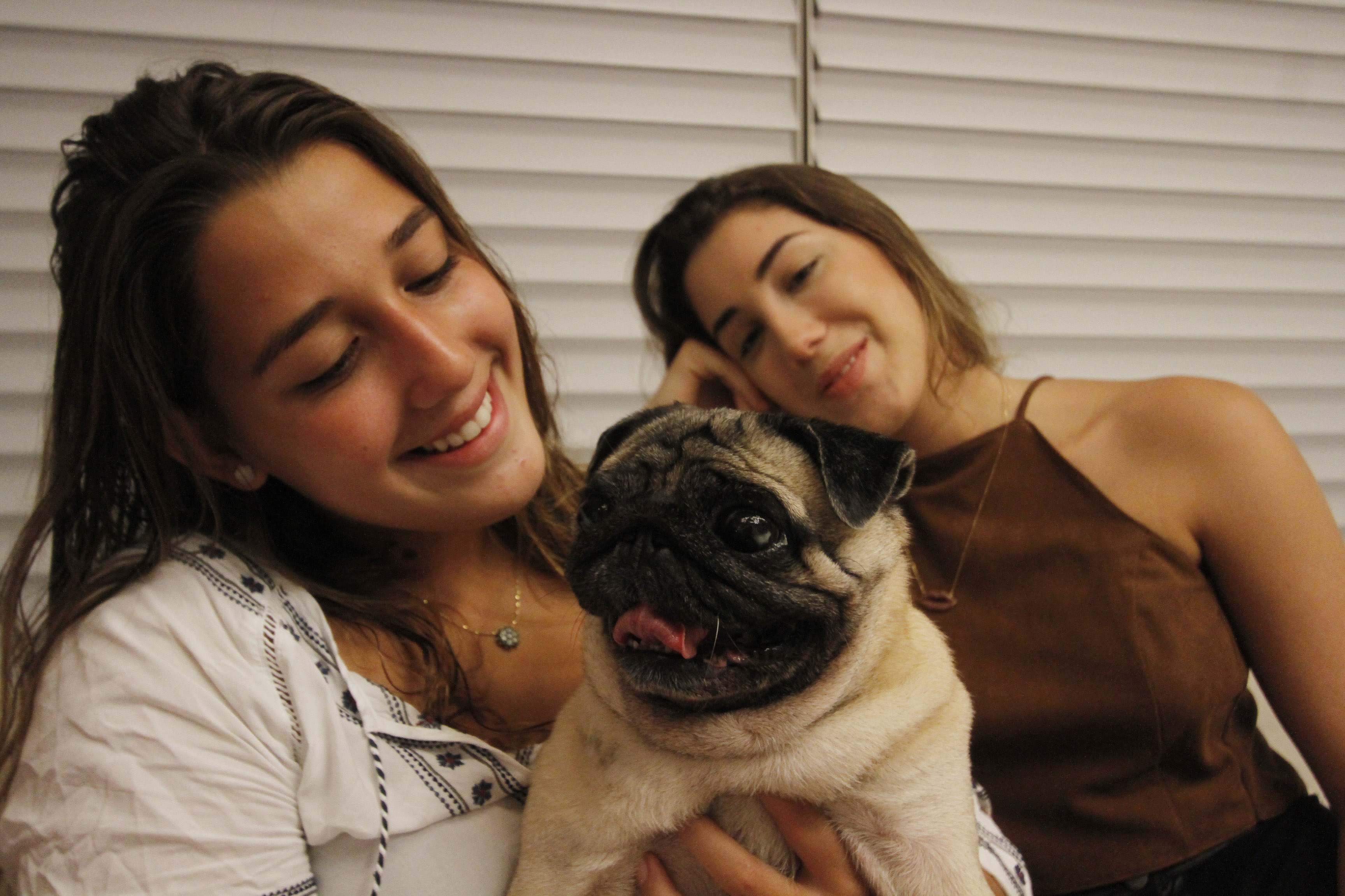 Agora que Elora mora em São Paulo, Mel cuida que cuida da cadelinha - Crédito: Ricardo Fernandes/DP