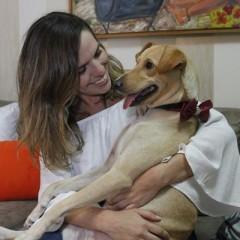 PET SOCIAL: Alegria, a cachorrinha vira-lata que conquistou a família de Tatiana Rands