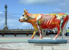 CowParade vai espalhar 55 esculturas de vacas pelo Recife