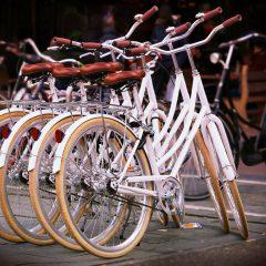 Recife recebe encontro nacional de cicloativismo