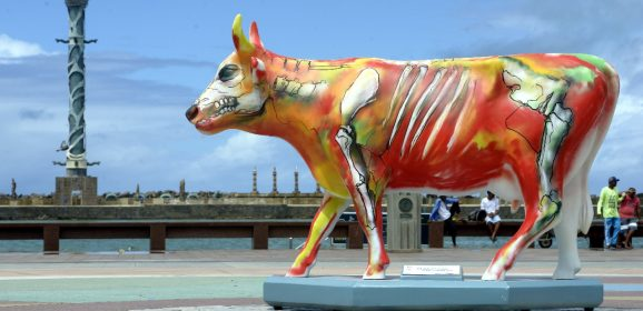 Nomes inusitados para as vacas do CowParade no Recife: confira os locais que serão instaladas