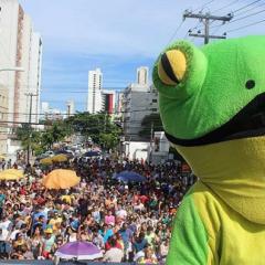 Bloco de carnaval realizará primeira edição de festa de São João
